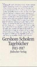 Tagebücher 1. Halbband 1913 - 1917