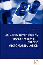 Augmented Steady Hand System for Precise Micromanipulation