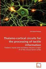Thalamo-Cortical Circuits for the Processing of Tactile Information