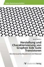 Herstellung und Charakterisierung von Graphen Side Gate Transistoren