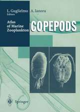 Atlas of Marine Zooplankton Straits of Magellan: Copepods