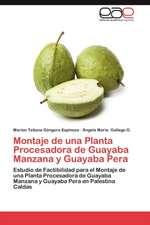 Montaje de Una Planta Procesadora de Guayaba Manzana y Guayaba Pera