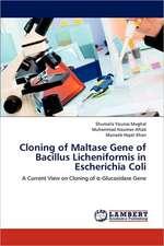 Cloning of Maltase Gene of Bacillus Licheniformis in Escherichia Coli