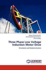 Three Phase Low Voltage Induction Motor Drive