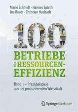 100 Betriebe für Ressourceneffizienz - Band 1: Praxisbeispiele aus der produzierenden Wirtschaft