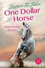 One Dollar Horse, Band 3 - Stürmische Zeiten