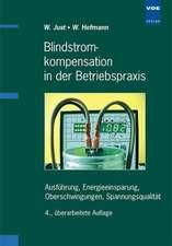 Blindstrom-Kompensation in der Betriebspraxis