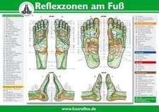 Reflexzonen am Fuß (2 Tafeln A4)
