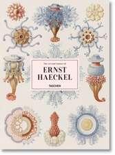 Willmann, R: Art and Science of Ernst Haeckel