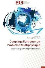 Couplage Fort Pour Un Probleme Multiphysique