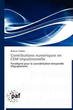 Contributions numériques en CEM impulsionnelle
