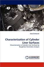 Characterization of Cylinder Liner Surfaces