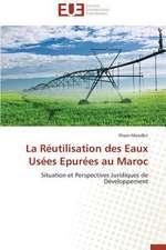 La Reutilisation Des Eaux Usees Epurees Au Maroc:  Un Modele Ideal ?