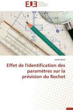 Effet de L'Identification Des Parametres Sur La Prevision Du Rochet:  Analyse de La Rentabilite Et Du Risque
