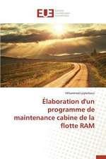 Elaboration D'Un Programme de Maintenance Cabine de La Flotte RAM:  Cas Du Service Abr