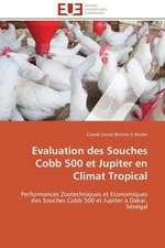 Evaluation Des Souches Cobb 500 Et Jupiter En Climat Tropical:  Senegal/France