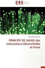 Principe de Jauge Des Interactions Electrofaible Et Forte:  Stabilite Et Diagnostic