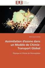 Assimilation D'Ozone Dans Un Modele de Chimie-Transport Global:  Une Boite Noire?