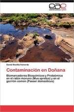 Contaminacion En Donana:  Flores, de Pueblo a Barrio de Megaciudad