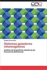 Sistemas Guiadores Inhomogeneos:  Un Enfoque Transdisciplinar