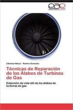 Tecnicas de Reparacion de Los Alabes de Turbinas de Gas:  El Efecto de Las Politicas Neoliberales