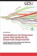 Incubadoras de Empresas Como Herramienta de Desarrollo Empresarial:  El Alma de La Literatura