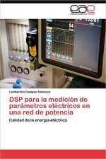 DSP Para La Medicion de Parametros Electricos En Una Red de Potencia:  de Caciques a Ciudadanos, Santa Maria Xochiaca