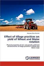 Effect of tillage practices on yield of Wheat and Maize rotation