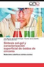 Sintesis Sol-Gel y Caracterizacion Superficial de Oxidos de Circonio:  El Teatro Romano de Cartagena
