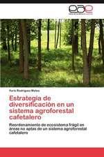 Estrategia de Diversificacion En Un Sistema Agroforestal Cafetalero:  La Familia