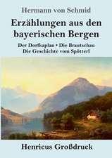 Erzählungen aus den bayerischen Bergen (Großdruck)