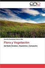 Flora y Vegetacion:  Elemento Necesario En La Vida de Los Seres Humanos