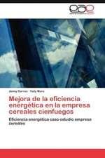 Mejora de La Eficiencia Energetica En La Empresa Cereales Cienfuegos:  Estudios del VIII Centenario