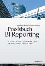 Praxisbuch BI Reporting