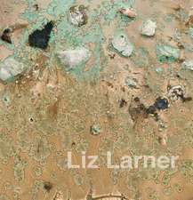 Liz Larner