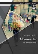 Mikrokredite:  Eine Okonomische Analyse