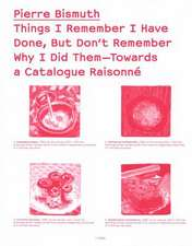 Things I Remember I Have Done, But Don`t Remember Why I Did Them Towards a Catalogue Raisonné