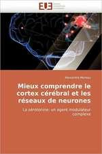 Mieux comprendre le cortex cérébral et les réseaux de neurones