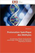 Protonation Specifique Des Methyles