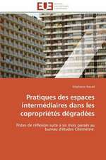 Pratiques Des Espaces Intermediaires Dans Les Coproprietes Degradees:  Une Nouvelle Hanse