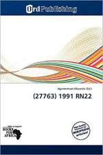 (27763) 1991 RN22