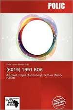 (6019) 1991 RO6