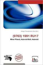 (9763) 1991 RU17