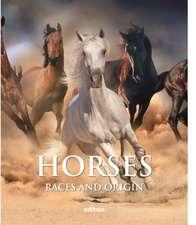 Dalmau, D: Horses
