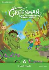 Greenman and the Magic Forest A Flashcards (Pack of 48)