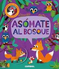 Asomate al Bosque = Peek-Through Forest