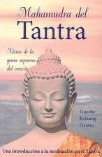 Mahamudra del Tantra:  Nectar de la Gema Suprema del Corazon