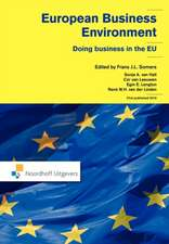 European Business Environment