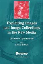 Exploiting Images and Image Collections in the New Media:  Gold Mine or Legal Minefield?