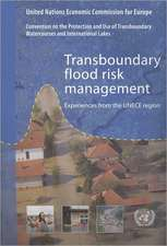 Transboundary Flood Risk Management:  Experiences from the Unece Region